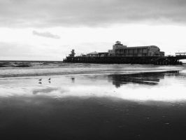 Bournemouth Pier by TashHen