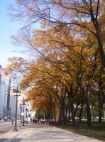 October in Chicago by myartisfashion