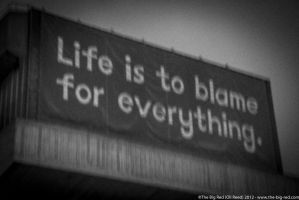Life is to blame for everything by the-big-red