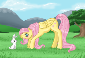 Fluttershy by Amenoo