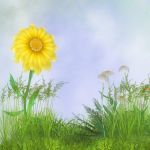 Free the Daisies by oldhippieart