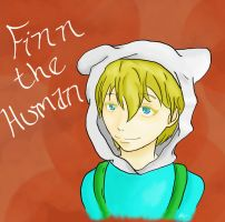 Finn the Human by Hincaru