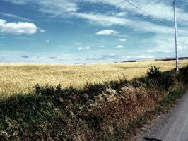 Country Life by alacazou