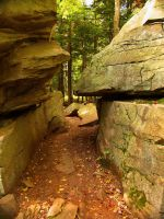 Ricketts Glen State Park 114 by Dracoart-Stock