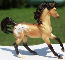 Breyer Spun Gold Stock 3 by Lovely-DreamCatcher