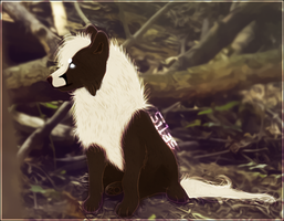 Silas pup by sillymil