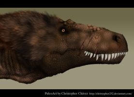 Daspletosaurus by Christopher252