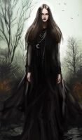 Witch of the Marshes by toherrys
