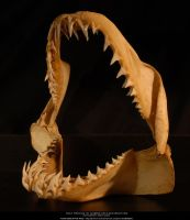 Shark jaw II by Grinmir-stock