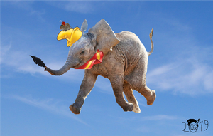 Live action Dumbo? by pikachuandpichu106