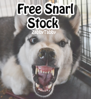 Free Snarl Stock by WagginKennelClub