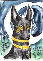 ACEO - Kashmir by Imaginary-wolf