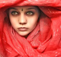 A Rose like India by igaboo