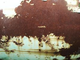 Rusty Tank Texture 2 by Bound-By-Leather