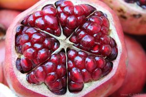 Pomegranate by irenespain