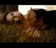.:Autumn MomentsI:. by neslihans