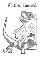 Frilled Lizard by BeckyDIllustrations