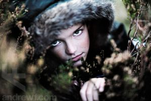 Dylan in the heather by andrewfphoto