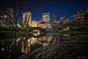 night at the Central park by Tomoji-ized