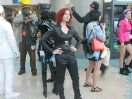 Anime Expo 12, 10 by IronCobraAM