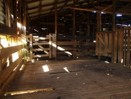Shed Stock - Woolshed by cbidgie