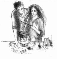 Harry and Hermione by LittleSeaSparrow