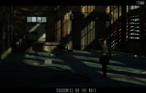 Shadows by nobbe42