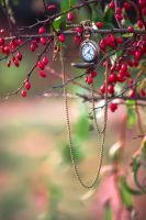 Autumn clocks3 by NRichey