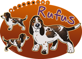 x_. Rufus the Basset by srspibble