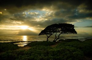 A Stormy Kaui Sunrise by DTherien
