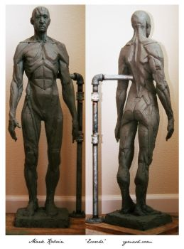 Ecorche body study by Mr-Vicious
