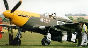 scans ofmc p51d mustang .  pre frankie . by Sceptre63