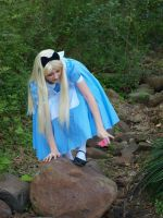 falling is alice's specialty by daisydaisydoom