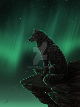 Northern Lights by Skyybi