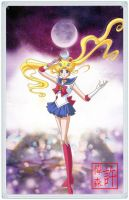 Sailor Moon Kanzenban (New Anime) by xuweisen