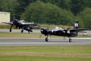 Navy Cats Takeoff by shelbs2