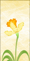 Fractal Manip Stock - Potted Daffodil III by rockgem