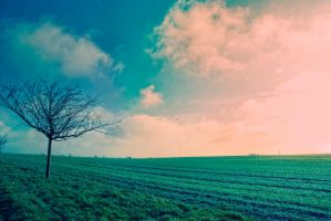 Landscape_II by falname-stock