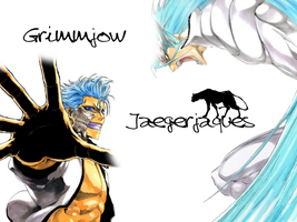 Grimmjow wallpaper by 16thSquadSanseki