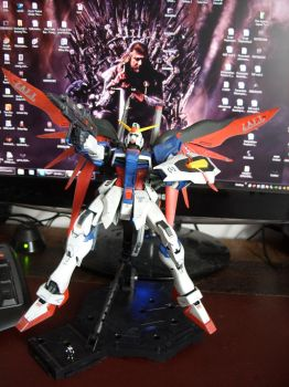 1:100 MG Destiny gundam 4323 by jiyuujin55