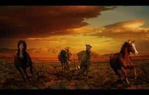 Horses Gallop by Akpelan