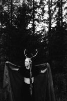 The Queen of the Forest by Nilenna