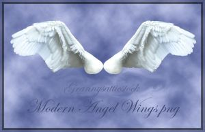 Angels Wings by GRANNYSATTICSTOCK