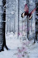 Winter Butterfly by MoRbiD-ViXeN