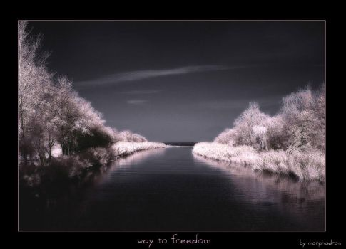 way to freedom by morphadron