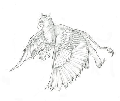 Flying gryphon by QuicksilverCat