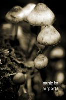 080920-8 by Botemedlet