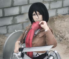 Shingeko no Kyojin (attack on titan) by CosPlayJG