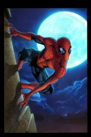 spiderdude night by sanjun