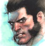 Wolvie marker on Canson Paper by leinilyu